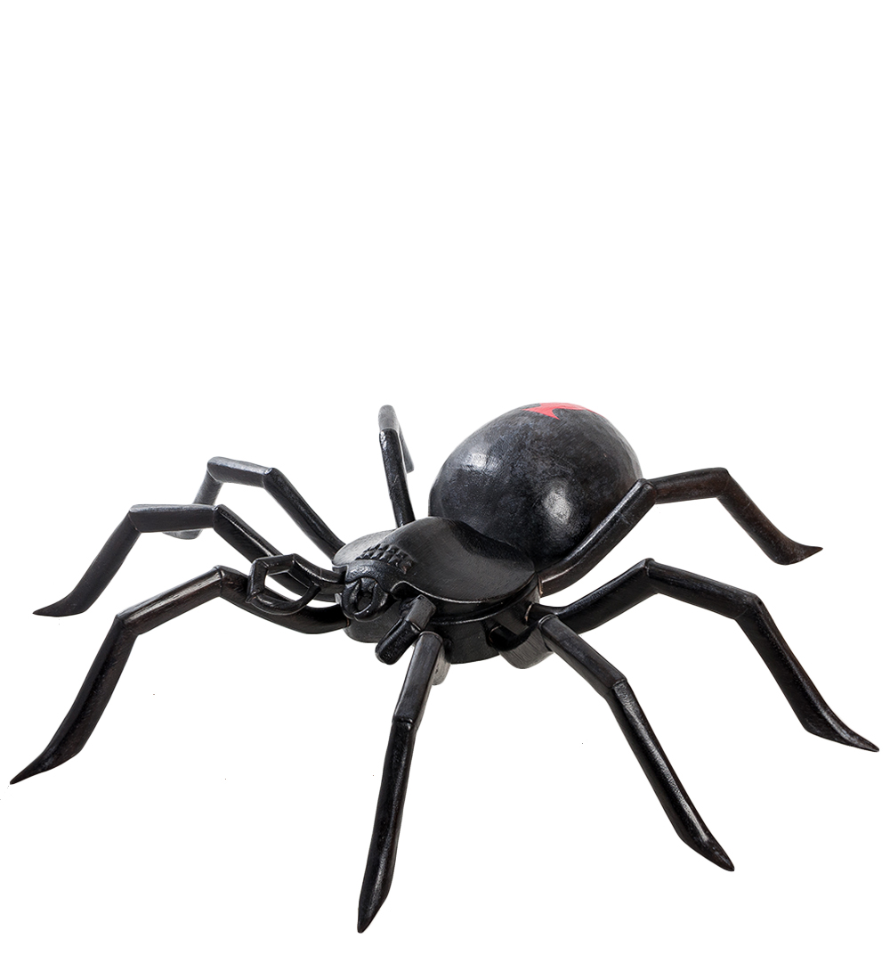 картинка паука большого черного прекрасно чувствовал